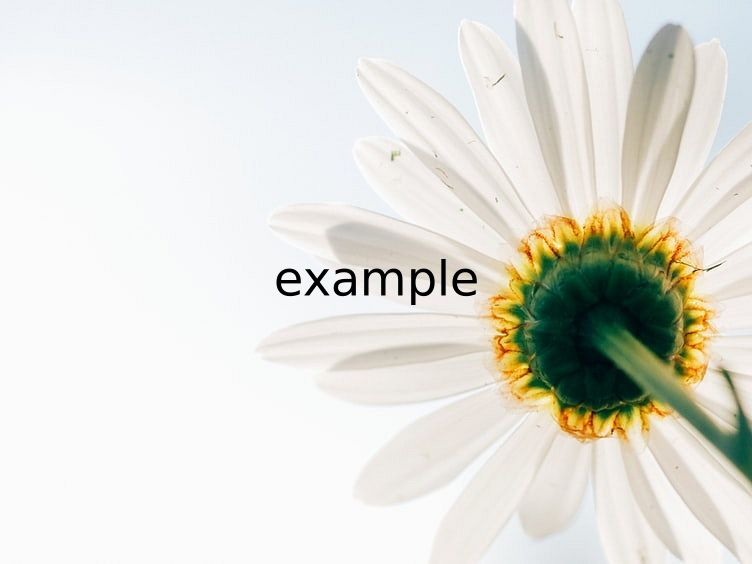 text=example